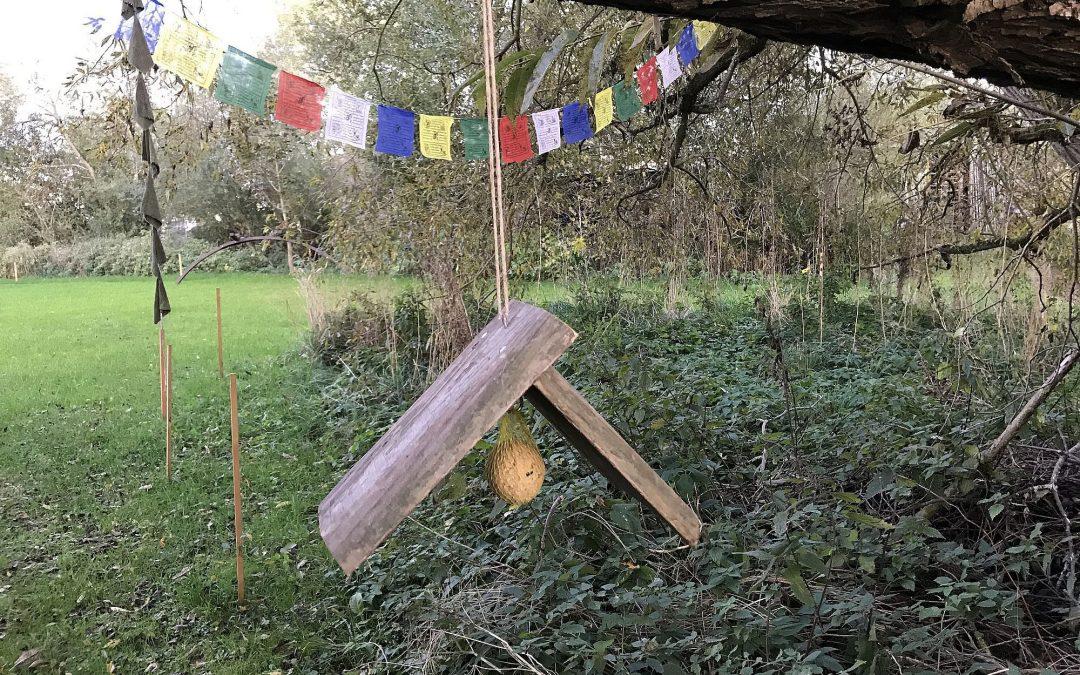 Eine Vogelfutterstelle selber bauen