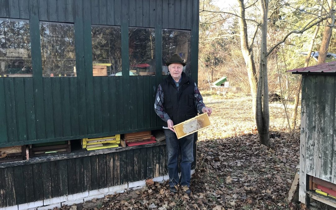 Eine kleine Bienenkunde mit Imker Martin Scheibel