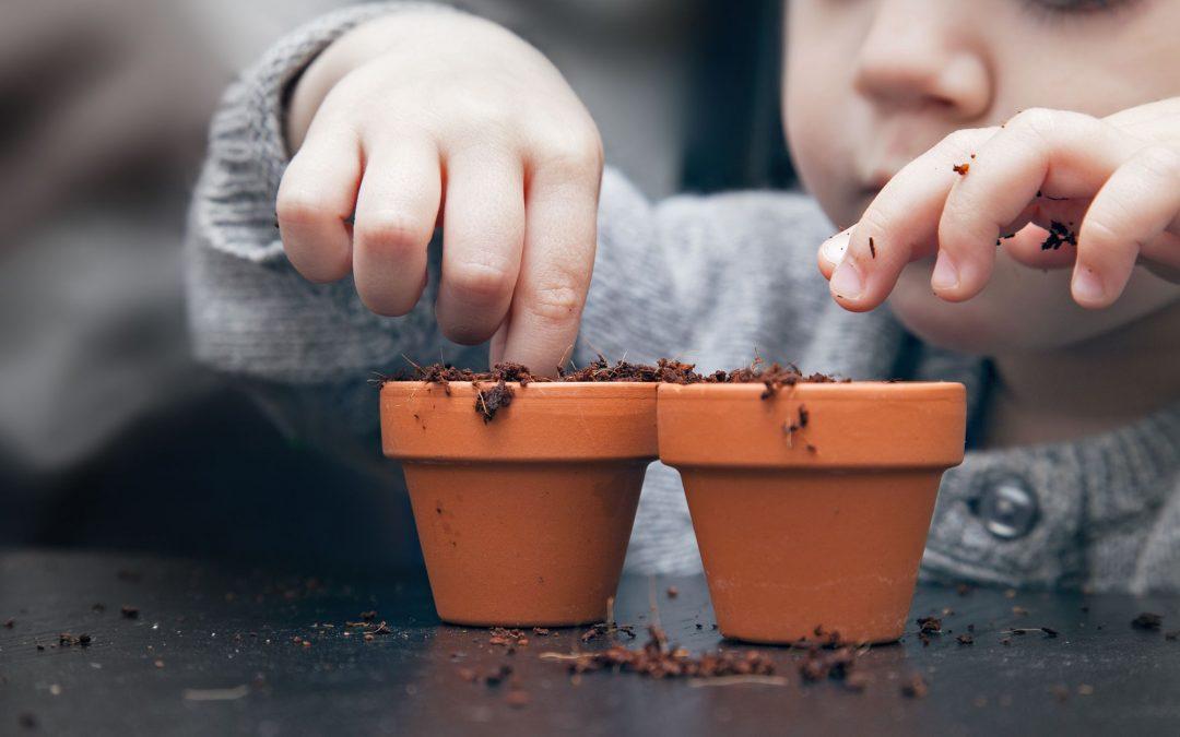 Heute sind wir Gärtner! 😊